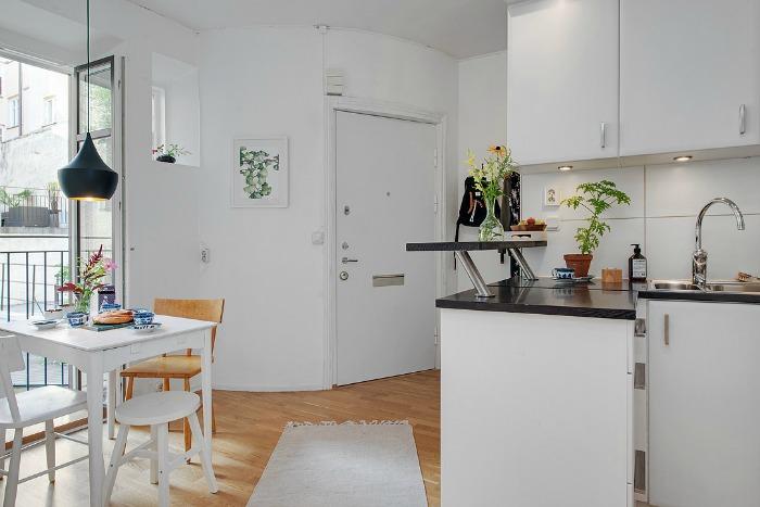 salón comedor cocina y hall en un mismo espacio