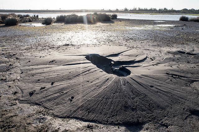 ما هو تسييل التربة؟ الأسباب والأضرار والعلاج