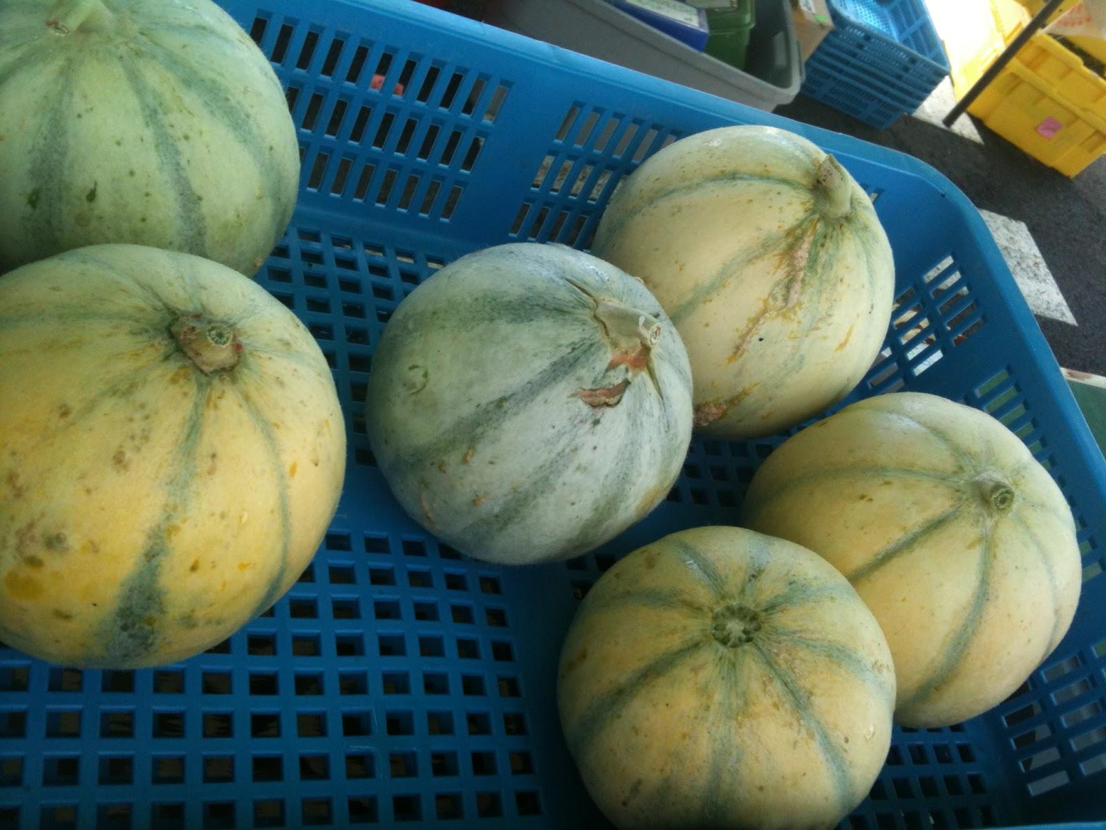 Alvarez Organic Farm — Blog | Bellevue Farmers Market
