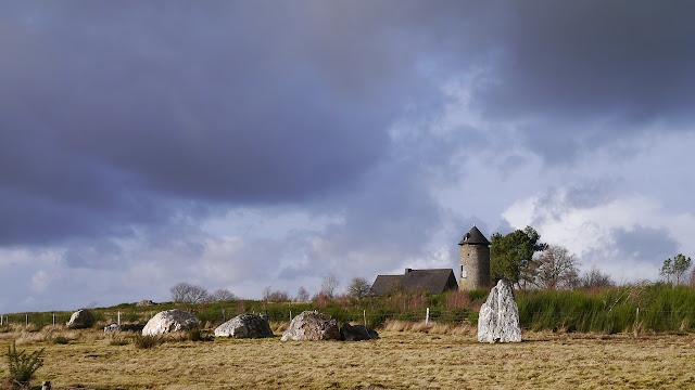 Les Mégalithes de saint-Just 35 ille et Vilaine dans les landes de Cojoux. ici,   Alignements du Moulin
