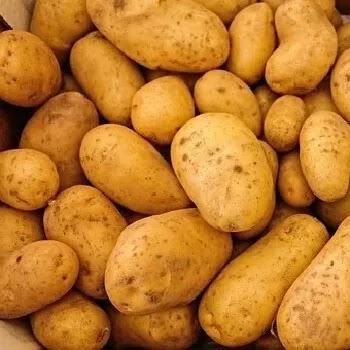 बटाटा, potato vegetables name in Marathi