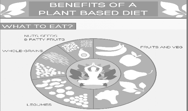Benefits of a Plant Based Diet #infographic