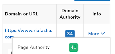 domain authority riafasha.com