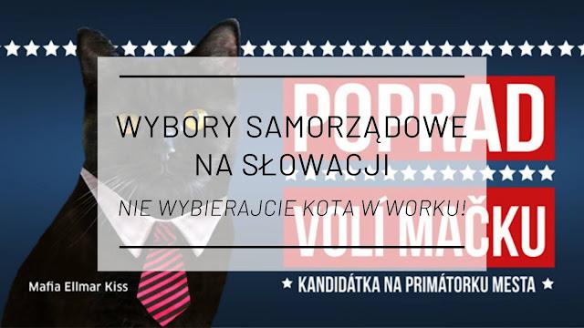 Wybory samorządowe na Słowacji: Nie wybierajcie kota w worku!