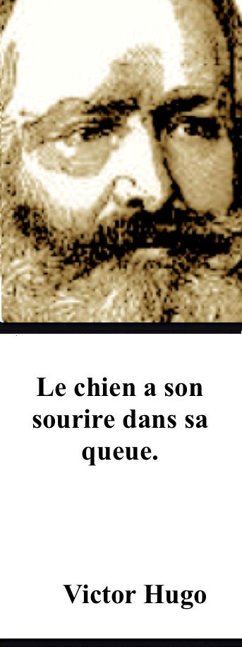 https://fr.wikipedia.org/wiki/Victor_Hugo