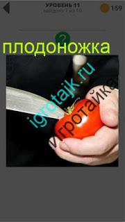 ножом в помидоре вырезается ножка 11 уровень 400 плюс слов 2