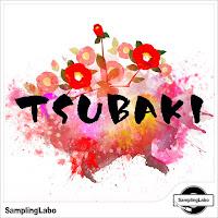 TSUBAKI / Massive Presets