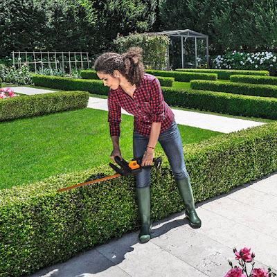 Best Value Cordless Hedge Trimmer