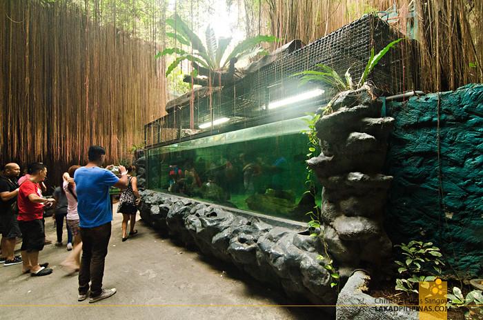 Manila Ocean Park Agos