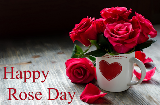 rose%2Bday%2Bimages - #20+ Best Happy Rose Day Images And HD Wallpapers 2018
