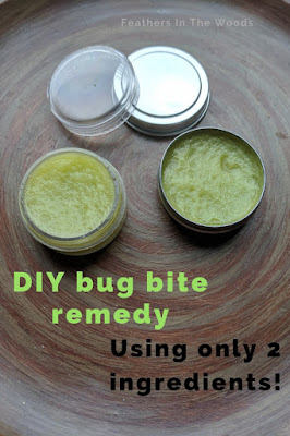 DIY bug bite remedy
