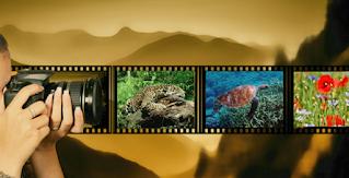 Lanzan concurso de fotografía sobre el valor del agua