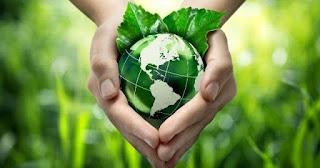 Cursos de Educação Ambiental