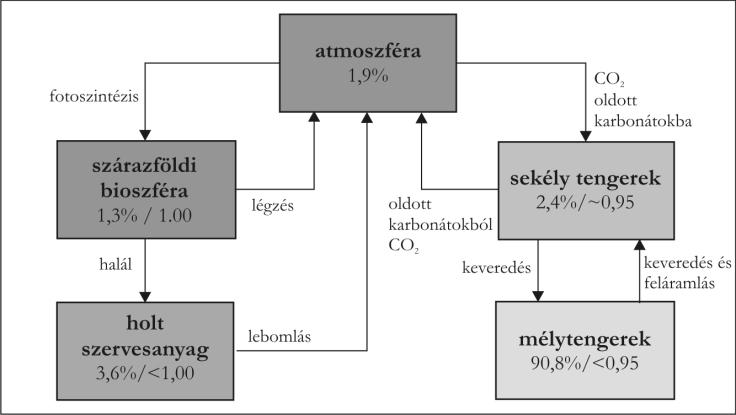A kémiai radioaktív szén meghatározása
