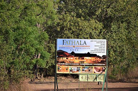 LA RESERVE DE FATHALA : Parc, animaux, visite, tourisme, sauvage, oiseaux, LEUKSENEGAL, Dakar, Sénégal, Afrique