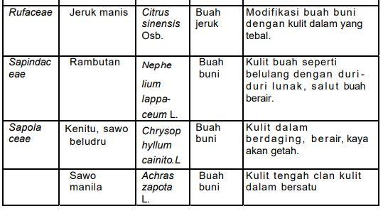 Tabel Klasifikasi buah-buahan menurut kedudukan sistematik, tipe dan pemanfaatan