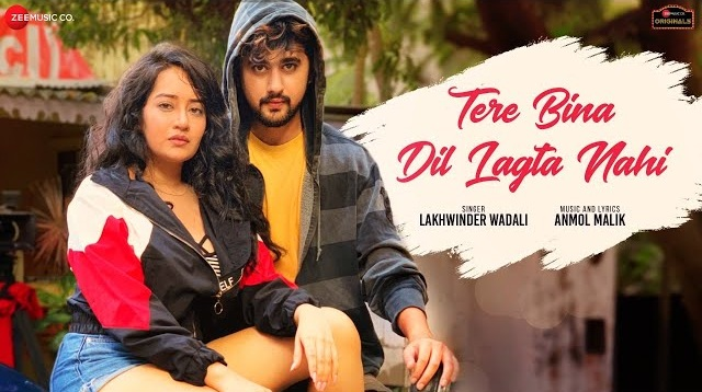 Tere Bina Dil Lagta Nahi Lyrics - Lakhwinder Wadali