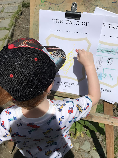 Little boy colouring in pictures of Beatrix Potter characters