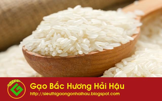 Gạo bắc hương đặc sản gạo ngon tại Hải Hậu Nam Định