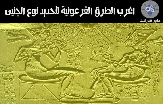 اغرب الطرق الفرعونية لتحديد نوع الجنين