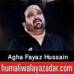 https://www.humaliwalayazadar.com/2015/04/agha-fayaz-hussain-nohay-2011-to-2016.html