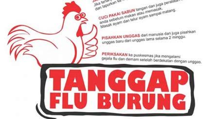 Tips Agar Terhindar Dari Virus Flu Burung