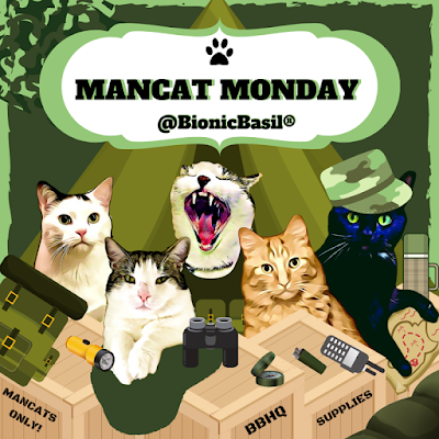 Mancat Monday at BBHQ with The B Team ©BionicBasil ®