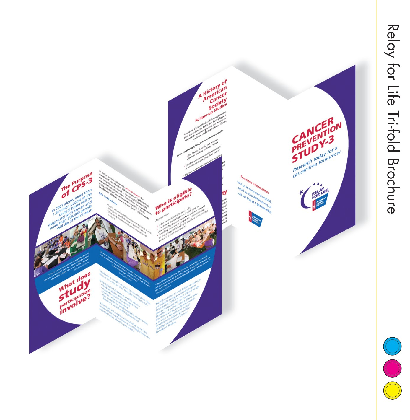 American Cancer Society Brochures: LaCDesign