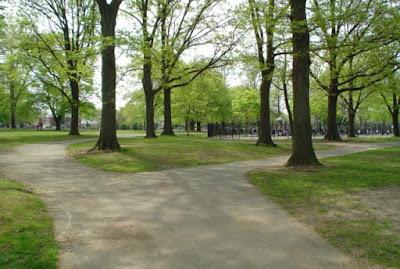 Νεαρή γυναίκα γδύνεται στο πάρκο και βγάζει selfie τα οπίσθιά της