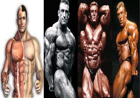 Best 3 Golden Rules for Muscle Growth !