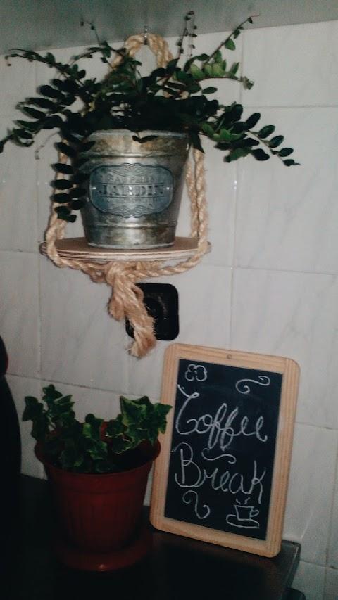 Casa da frente | As plantas