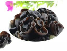 Image of Black Fungus