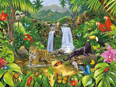 Biodiversidad o Diversidad Biológica