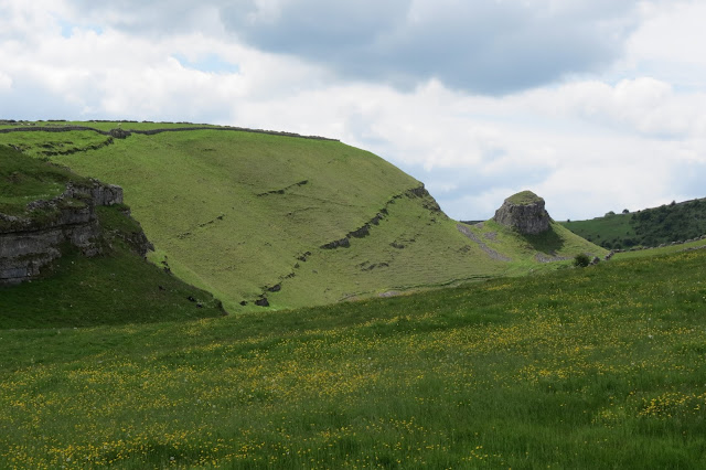 A view across a buttercup meadow to the steep side of the Dale and Peter's Stone.