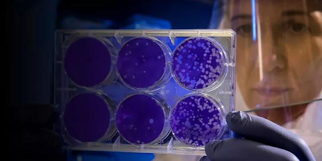 Peneliti Inggris: Varian Baru Virus Corona Lebih Cepat Menginfeksi Anak-anak
