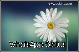 WhatsApp Status and Quotes