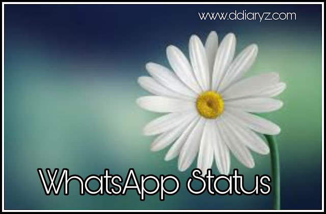 500+ Best WhatsApp Status and Quotes in 2020 [Love, Sad, Romantic, Funny, Attitude, Friendship,Mood Off, Miss You, Emotional]