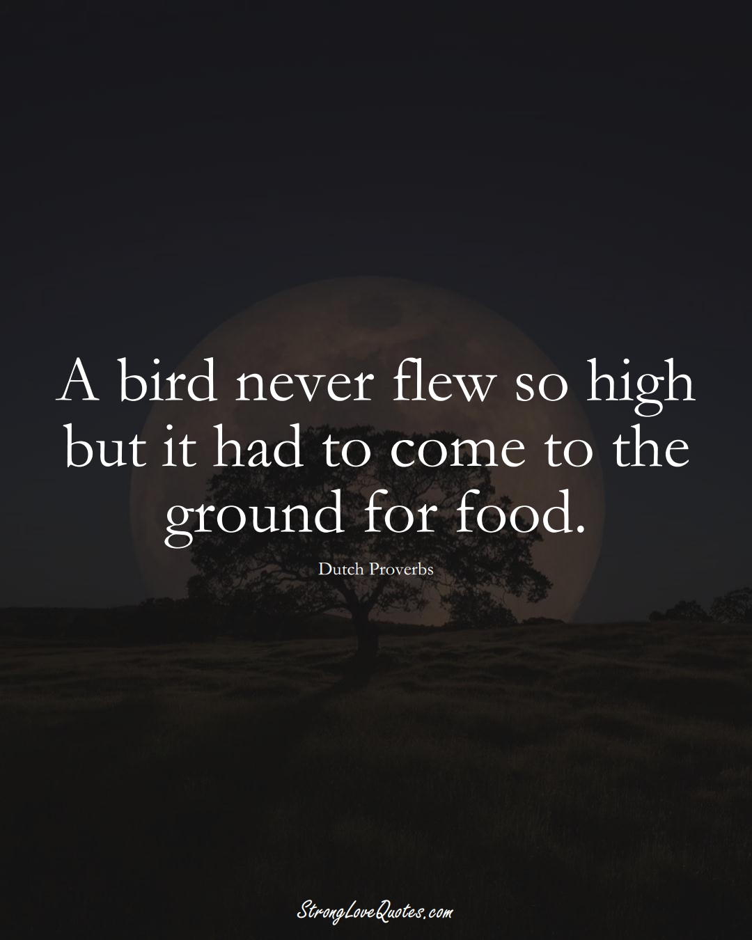 A bird never flew so high but it had to come to the ground for food. (Dutch Sayings);  #EuropeanSayings