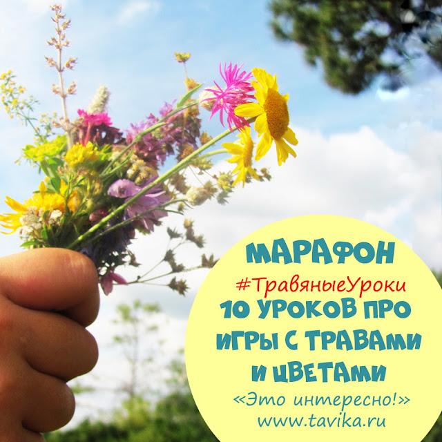занятия для детей о травах и цветах