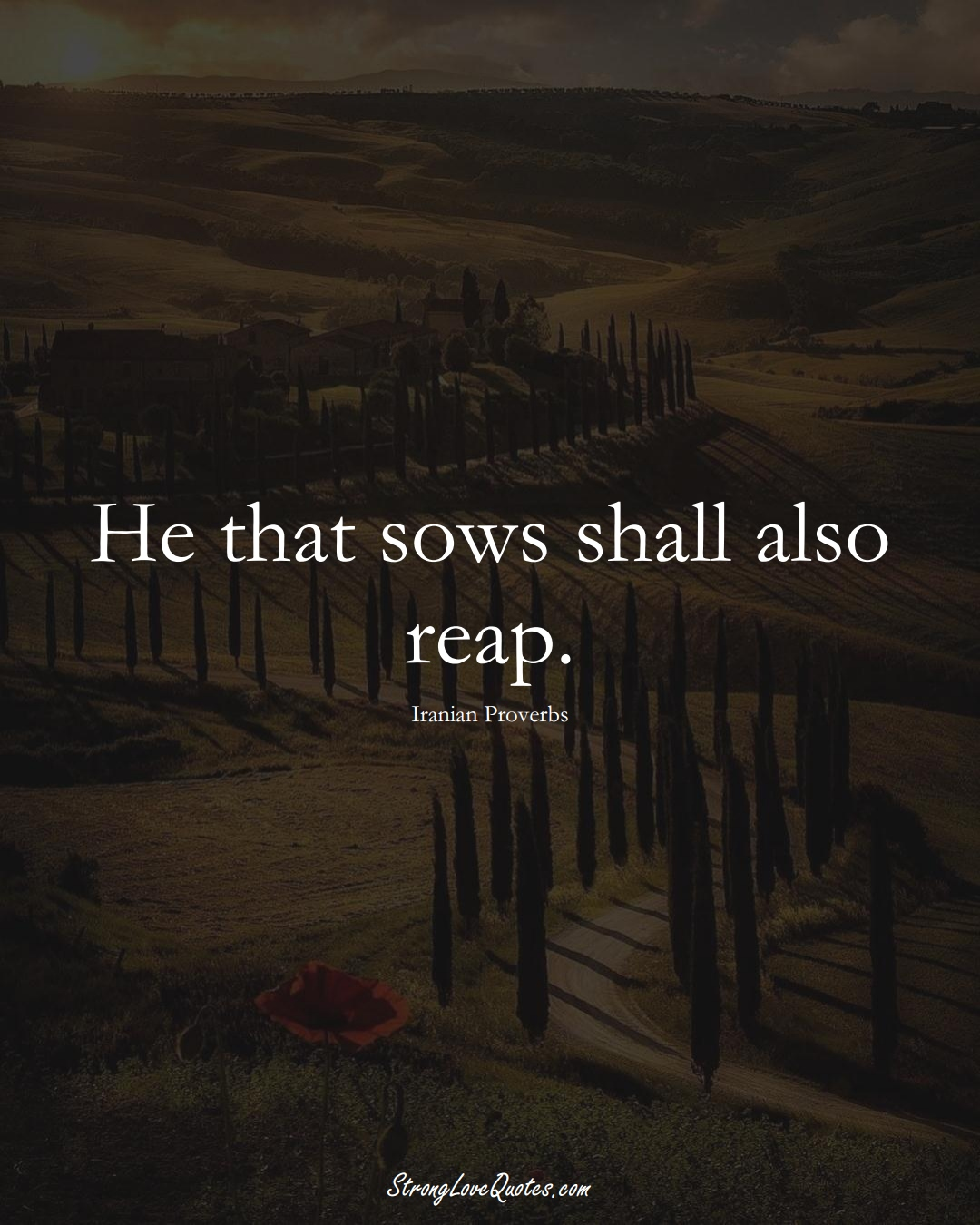 He that sows shall also reap. (Iranian Sayings);  #MiddleEasternSayings