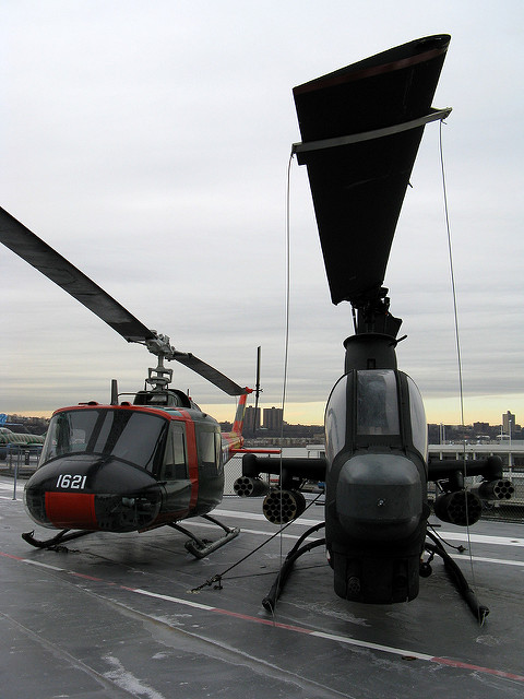 Bell UH-1 Iroquois and Bell AH-1G Cobra pic