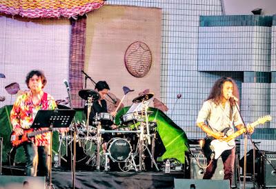 Anh Khoa performs at the Vietnam Festival 2015, Tokyo, Japan.