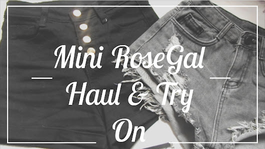 Mini RoseGal Haul + Try On | Review & YouTube