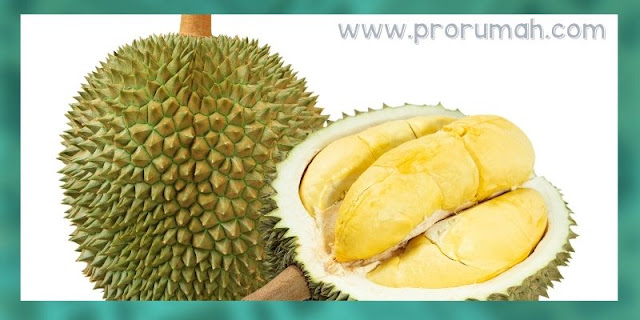 7 Bahan Alami yang Ampuh Mengusir Tikus - kulit buah durian