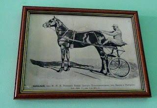 Дибровка. Конный завод. Фото из музея