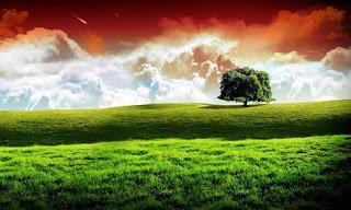 প্রাকৃতিক ছবি ডাউনলোড |প্রাকৃতিক ছবি hd | প্রাকৃতিক দৃশ্য |গ্রাম বাংলার প্রাকৃতিক দৃশ্য | সুন্দর সুন্দর প্রাকৃতিক দৃশ্য