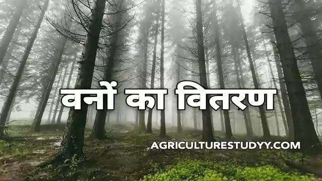 भारत में वनों का वितरण एवं विस्तार