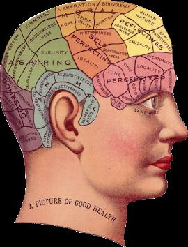 Lebih Dari 90% Penyakit Berasal Dari Pikiran