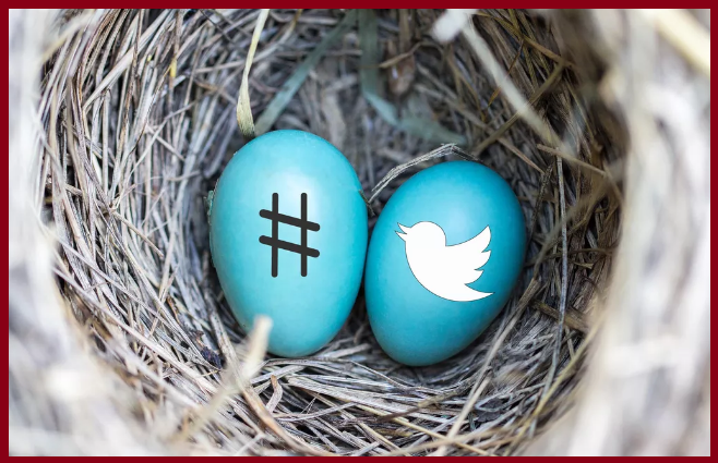 Twitter Explores Super Follows Where Authors Can Make Money worldfree4u.site