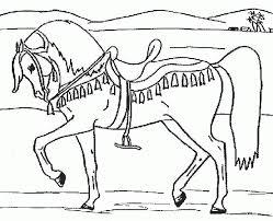 Malvorlagen Pferde Gratis Ausdrucken X Claudia Schiffer